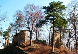 Zamek w Rożnowie - Rożnów