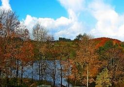 jeziuoro w barwach jesieni