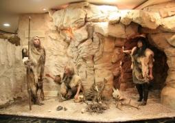 Wystawa muzealna