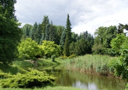Arboretum - Kórnik