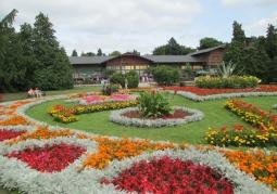 Ekspozycja ogrodowa Parku Zdrojowego