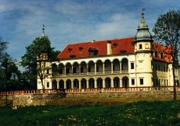 Pałac - widok z oddali