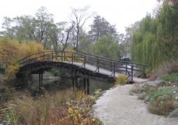 Mostek przez staw w ogrodzie
