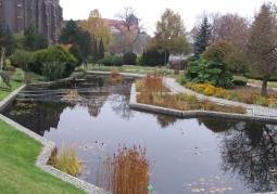 Ogród Botaniczny Uniwersytetu Wrocławskiego - Ostrów Tumski