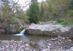Potok na terenie rezerwatu
