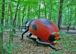 Park owadów