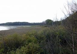 Rezerwat przyrody Żółwiowe Błota - Sobiborski Park Krajobrazowy