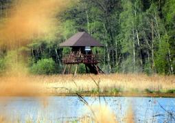 Wieża widokowa na ścieżce 'Perehod' - Poleski Park Narodowy