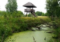 Wieża widokowa na ścieżce 'Obóz Powstańczy' - Poleski Park Narodowy