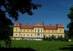 Pałac Czartoryskich - Wysocko