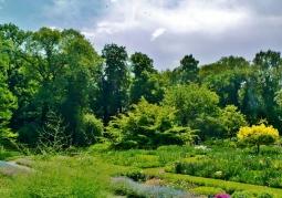 Ogród Botaniczny Uniwersytetu Jagiellońskiego - Kraków