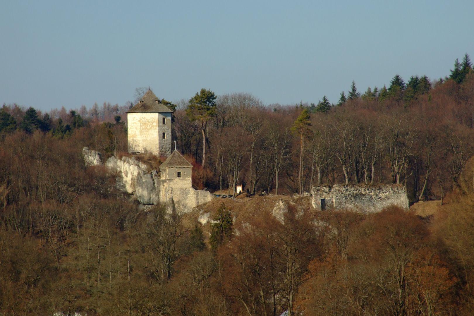 Ruiny zamku z oddali