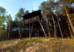 Wieża widokowa na skraju Durnego Bagna - Poleski Park Narodowy