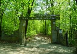 Arboretum Bramy Morawskiej - Racibórz