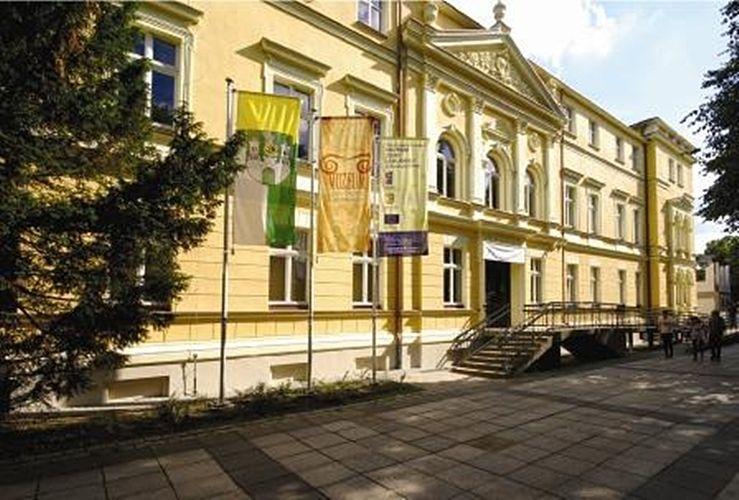 Budynek muzeum widziany od al. Niepodległości